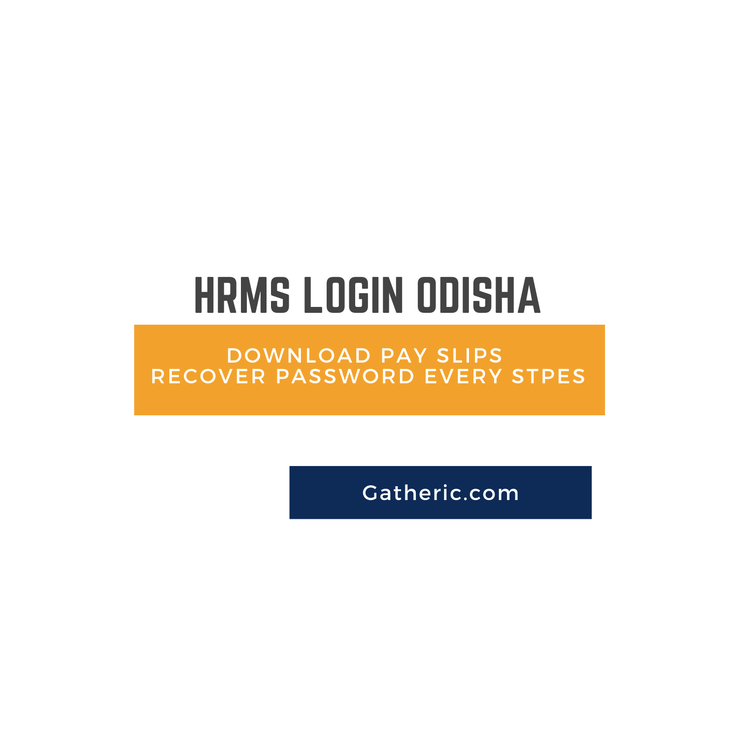 HRMS login Odisha- Download Payslip all steps